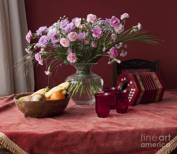 Wall Art - Photograph - Pink Carnations by Donald Davis