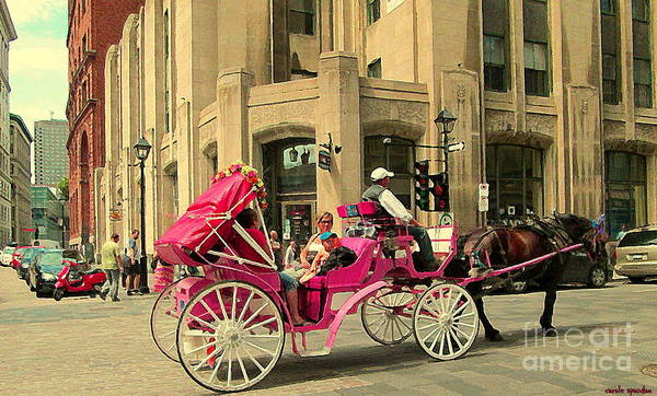 Painting - Pink Carriage Ride Through Historic Streets The Old City With Beautiful Dark Horse Quebec C Spandau by Carole Spandau