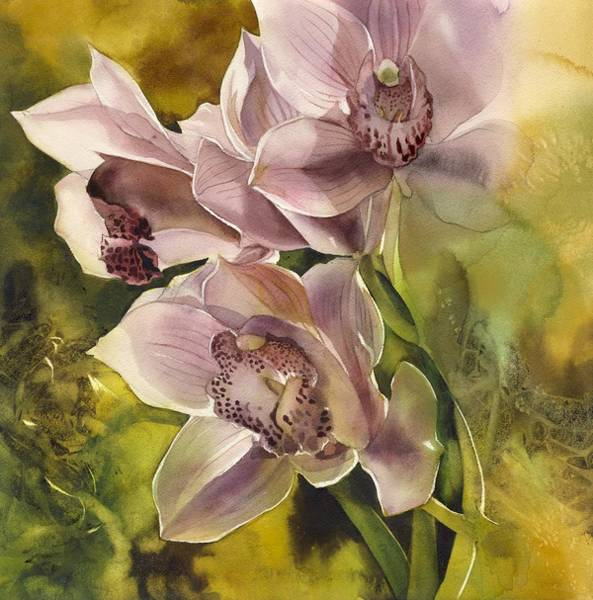 Painting - Pink Cymbidium Orchid by Alfred Ng
