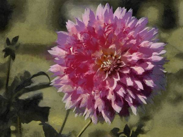 Painting - Pink Dahlia by Jeffrey Kolker