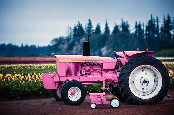 Photograph - Pink Deeres by Brian Bonham