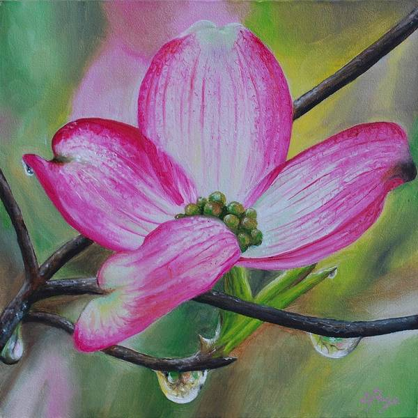 Painting - Pink Dogwood Blossom by Emily Page