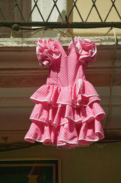 Dress Form Photograph - Pink Flamenco Dress For Little Girl by Panoramic Images