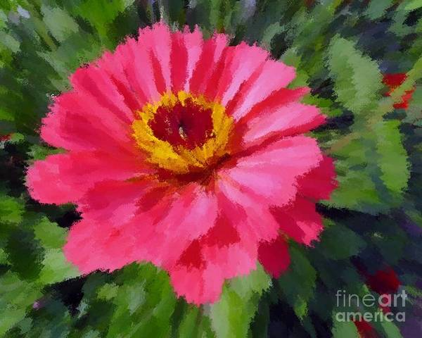 Photograph - Pink Flower by Donna Cavanaugh