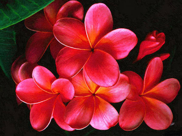 Painting - Pink Frangipani 001 by Dean Wittle