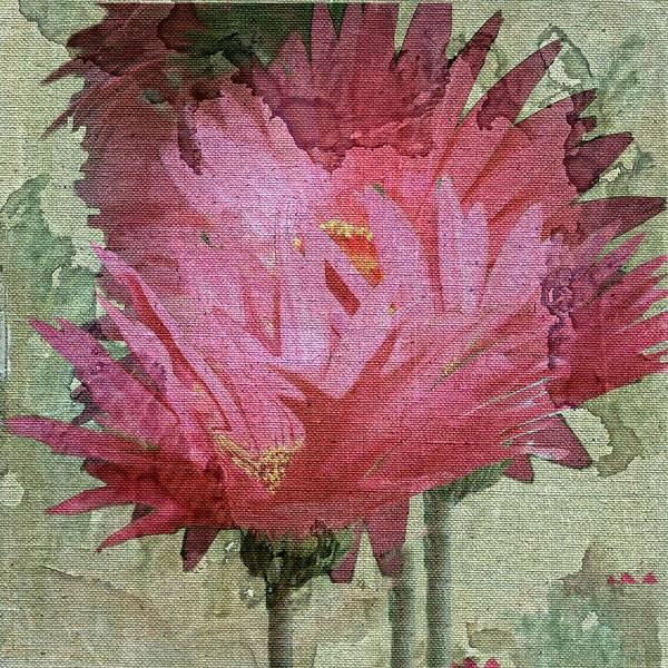 Fleur Digital Art - Pink Ganzias by Irma BACKELANT GALLERIES