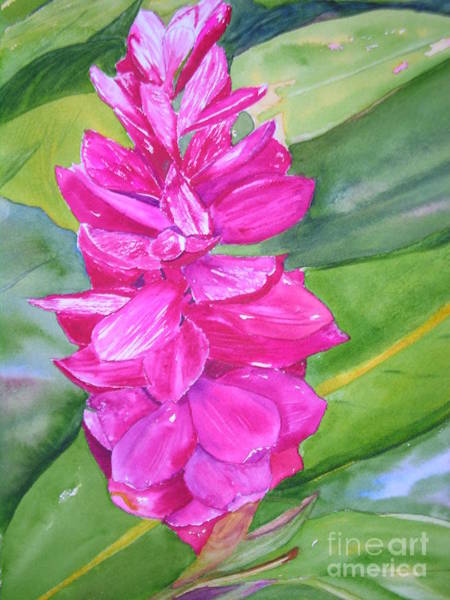 Painting - Pink Ginger by Peggy Dickerson