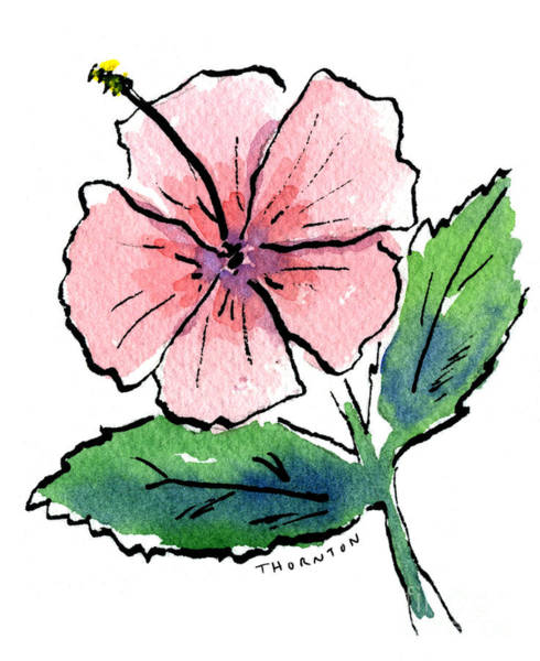 Painting - Pink Hibiscus by Diane Thornton