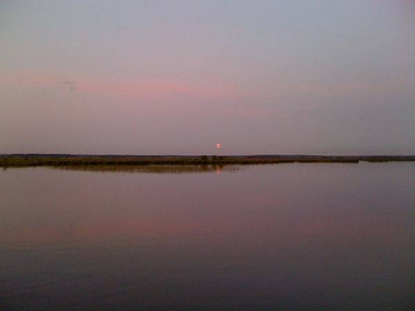Sestroretsk Photograph - Pink Moon Rising by Christine Rivers