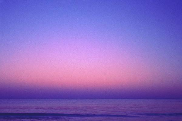 Photograph - Pink Ocean by Carol Whaley Addassi