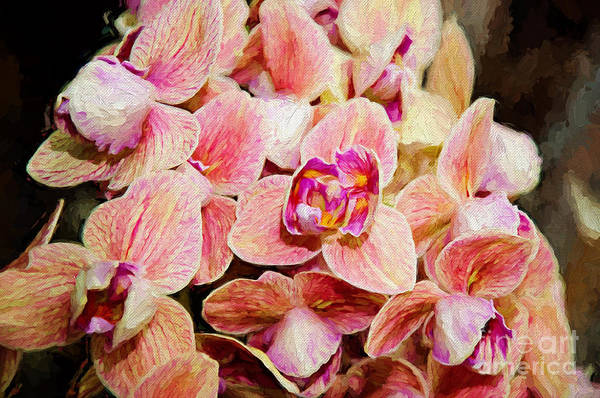 Photograph - Pink Orchids Painterly by Andee Design