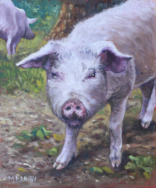 Painting - Pink Pig Portrait by Martin Davey