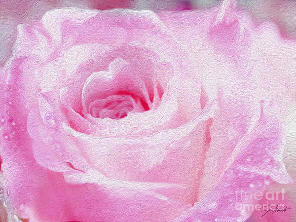Wall Art - Mixed Media - Pink Rose by Jon Neidert