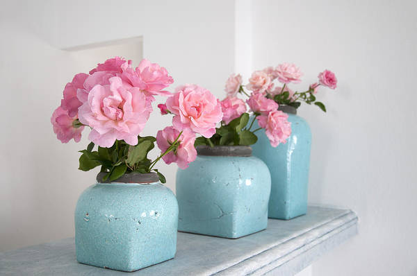 Photograph - Pink Roses In Turquoise Vases In Mykonos Greece by Brenda Kean