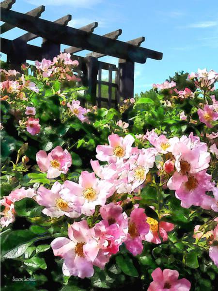 Photograph - Pink Roses Near Trellis by Susan Savad