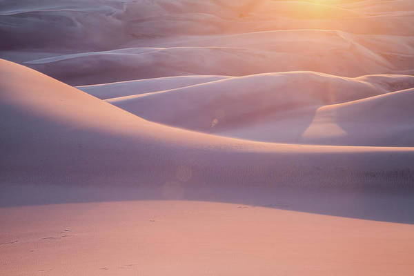 Great Sand Dunes National Park Photograph - Pink Sand Dunes by Adrian Studer