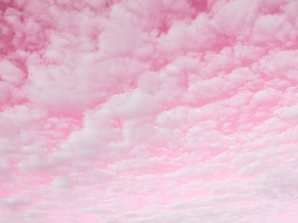 Photograph - Pink Sky by Marianna Mills