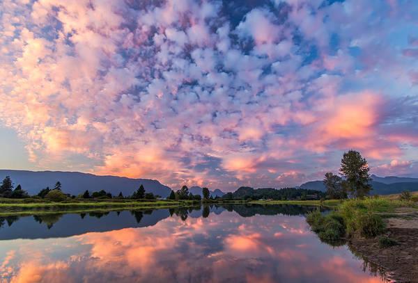 Alouette Wall Art - Photograph - Pink Sky Reflection by James Wheeler