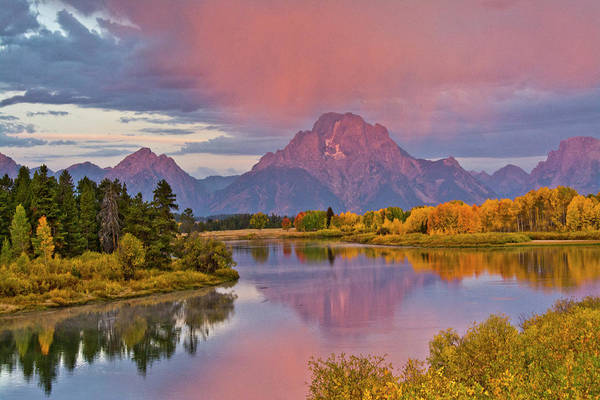 Mount Moran Photograph - Pink Sunrise In Autumn, Oxbow, Grand by Michel Hersen