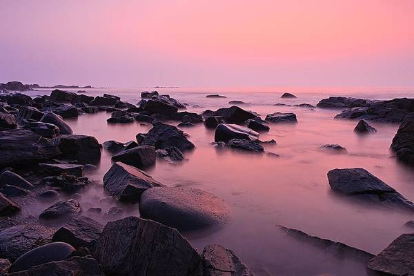 Photograph - Pink Sunrise Odiorne Point by Jeff Sinon