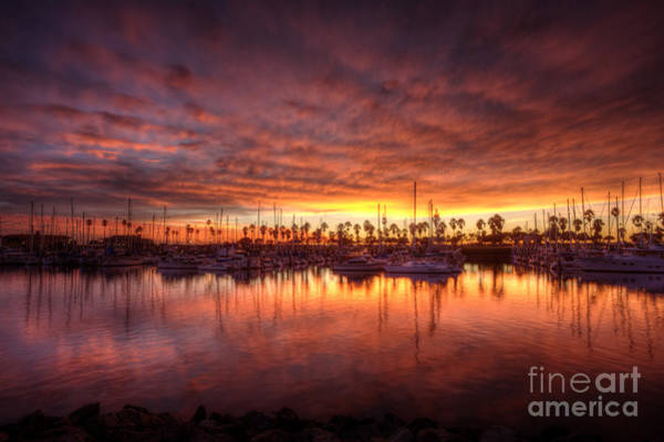 Photograph - Pink Sunset At Marina by Dan Friend