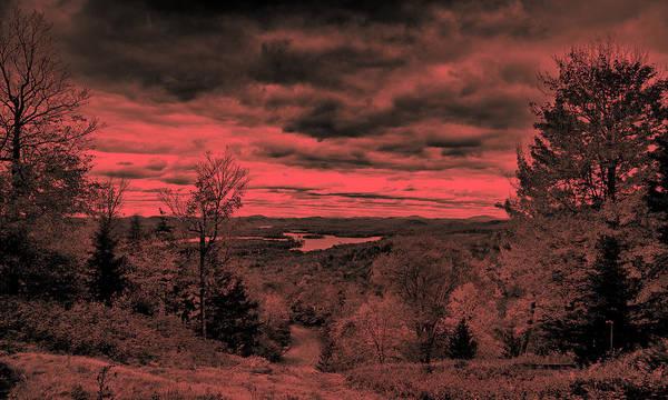 Photograph - Pink Sunset by David Patterson
