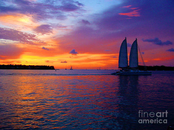 Photograph - Pink Sunset In Key West Florida by Susanne Van Hulst