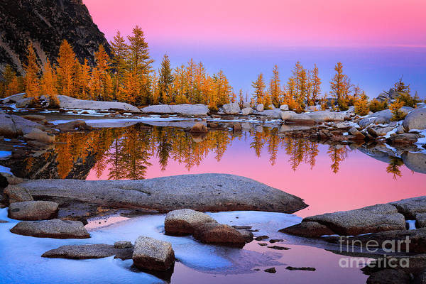 Alpine Lakes Wilderness Photograph - Pink Tarn - October by Inge Johnsson