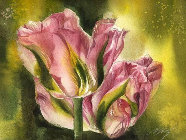 Painting - Pink Tulips With Yellow by Alfred Ng