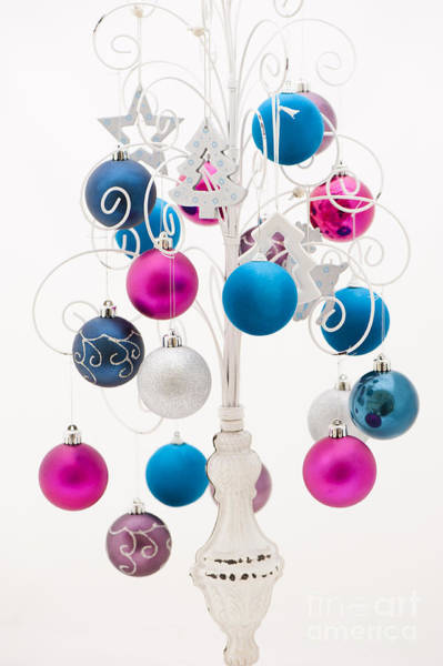 Yule Photograph - Pink White And Blue Christmas by Anne Gilbert