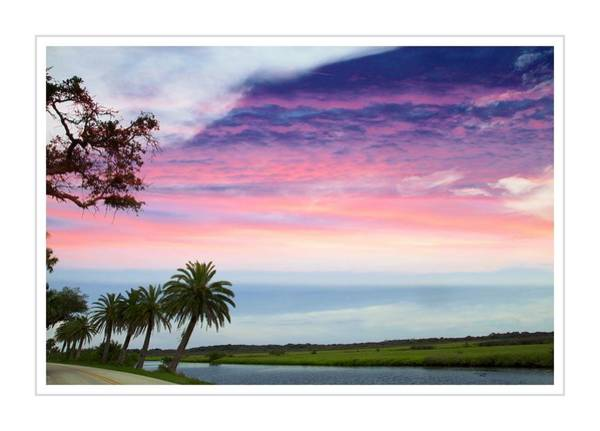 Flagler Beach Photograph - Pinked Clouds by Alice Gipson