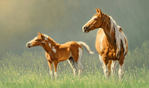Wall Art - Painting - Pinto Mare And Colt by Paul Krapf