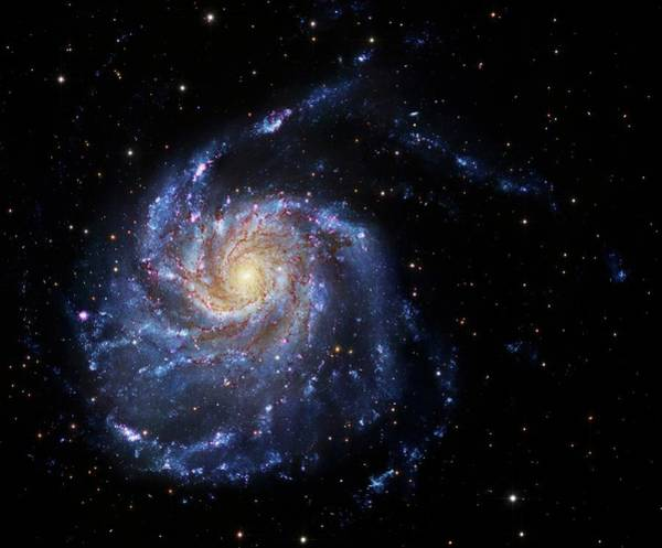 Ursa Major Photograph - Pinwheel Galaxy by Robert Gendler