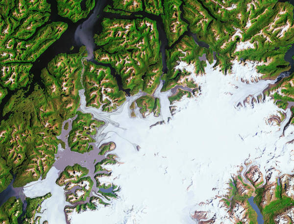 Pio Photograph - Pio Xi Glacier, Chile, Satellite View by Science Source