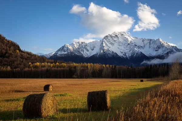 Photograph - Pioneer Hay Fields by Tim Newton