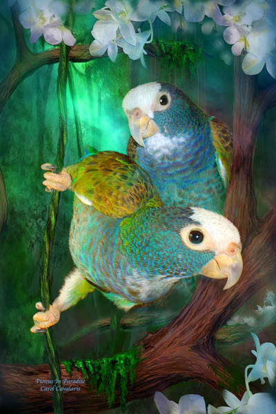 Mixed Media - Pionus In Paradise by Carol Cavalaris