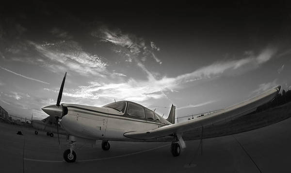 Wall Art - Photograph - Piper Arrow by Philip Rispin