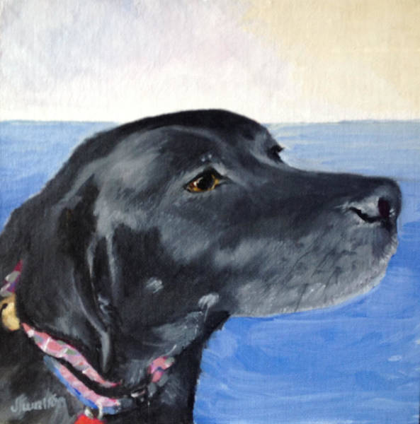 Painting - Piper by Judy Fischer Walton
