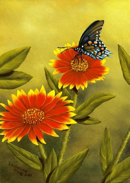 Wall Art - Painting - Pipevine Swallowtail And Blanket Flower by Rick Bainbridge