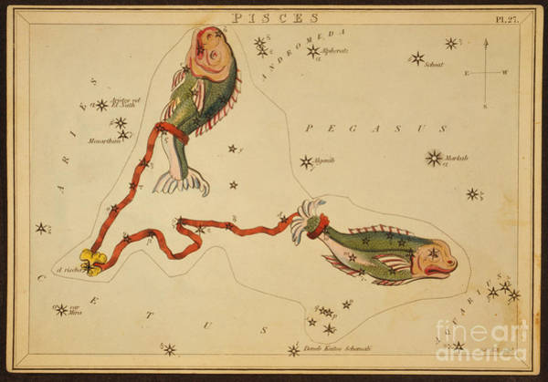 Photograph - Pisces Constellation Zodiac Sign 1825 by Science Source