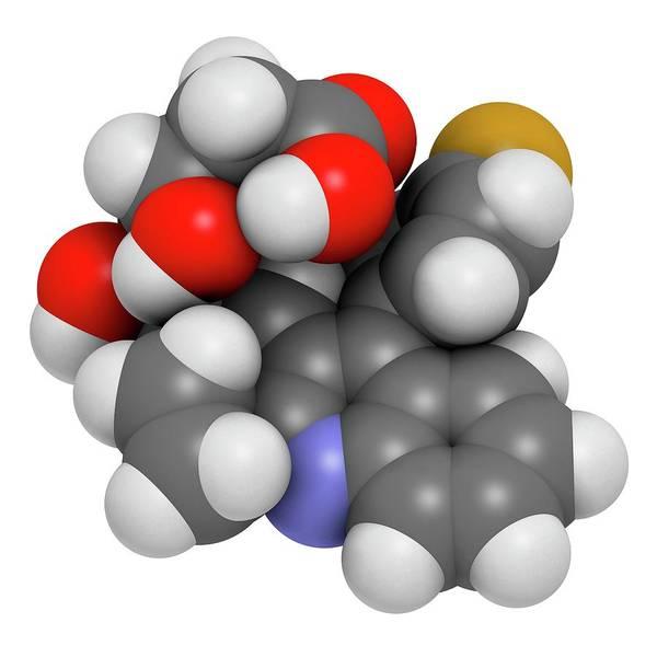 Molecular Wall Art - Photograph - Pitavastatin Hypercholesterolemia Drug by Molekuul/science Photo Library