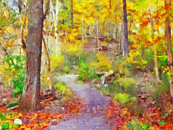 Digital Art - Pittsburgh's Frick Park In October. Yellow by Digital Photographic Arts