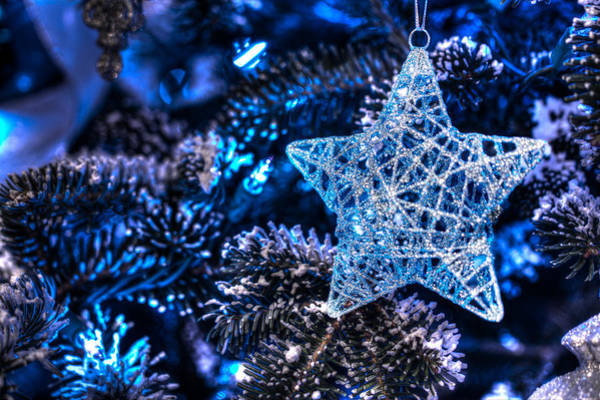 Photograph - Blue Christmas by Shelley Neff