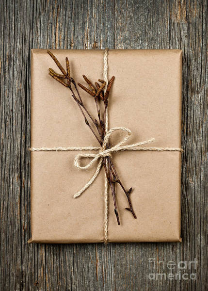 Gift Wrap Photograph - Plain Gift With Natural Decorations by Elena Elisseeva