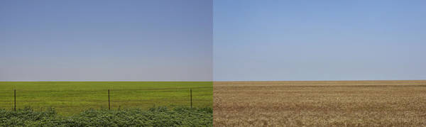 Photograph - Plains by Skip Hunt