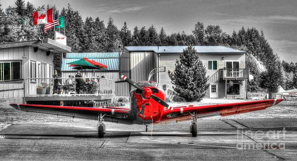 Photograph - Flying To Lunch In Pacific Northwest Washington  by Tap On Photo