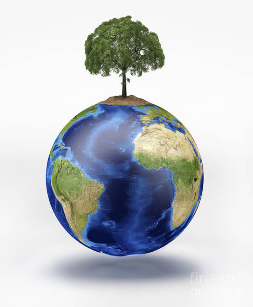Mother Earth Digital Art - Planet Earth With A Tree Growing On Top by Leonello Calvetti