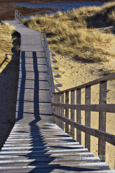 Photograph - Plank Walkway by Angela Doelling AD DESIGN Photo and PhotoArt