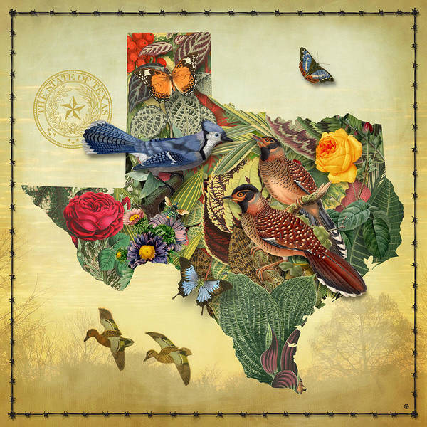 Wall Art - Painting - Nature Map Of Texas by Gary Grayson