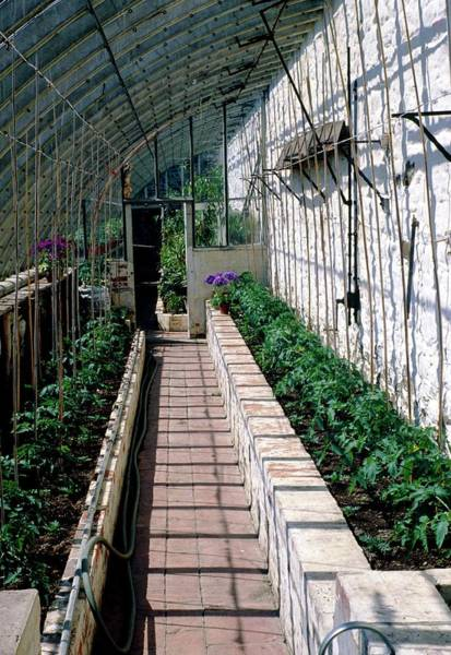 Glasshouse Photograph - Planted Greenhouse by Irene Windridge/science Photo Library